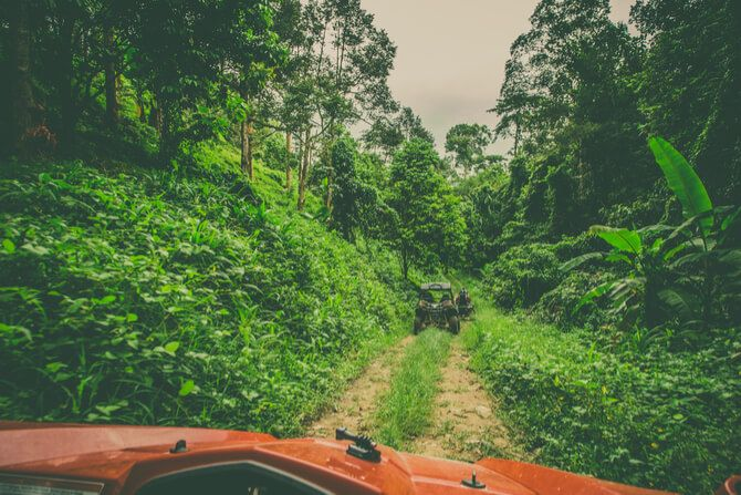 Tijuca Forest Jeep Tour1 - 7 Best Things To Do In Brazil
