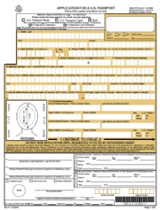 ds 11 Application Form for New passport 229x300 - ds-11